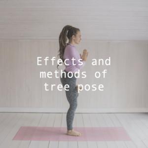 木のポーズの効果や方法。ふらついてできない原因は?