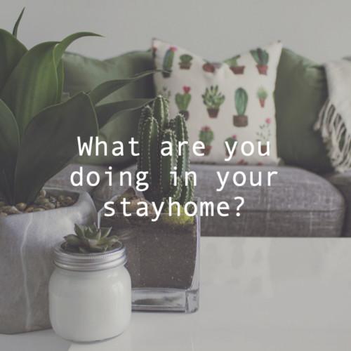 STAYHOME何してるのアイキャッチ