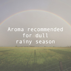 だるい梅雨におすすめのアロマオイル。リンパマッサージで全身ケア
