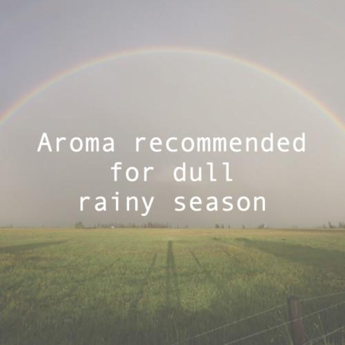 だるい梅雨のアロマアイキャッチ