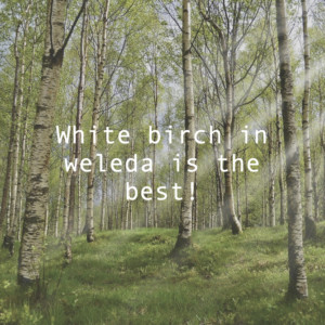 WELEDAのホワイトバーチボディオイルが最高!おこもり美容に最適