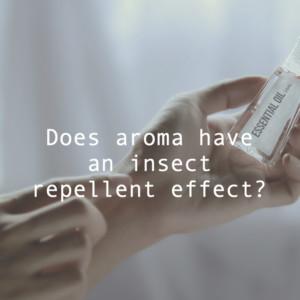 アロマオイルの防虫効果とは?おすすめ精油と虫除けスプレーの作り方